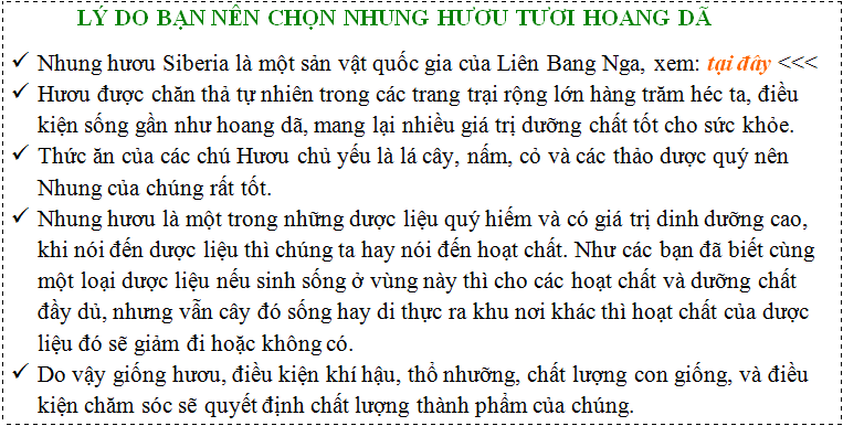 ly-do-nen-chon-nhung-huou-tuoi